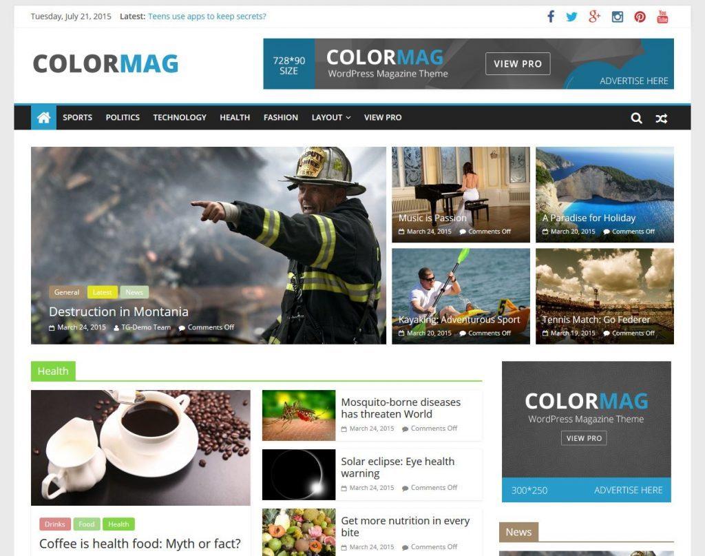 Panduan Memilih Theme WordPress untuk Pemula