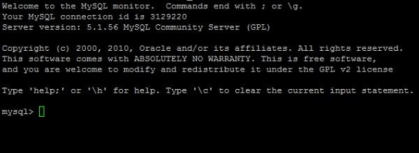 cara install wordpress dengan SSH di server langsung