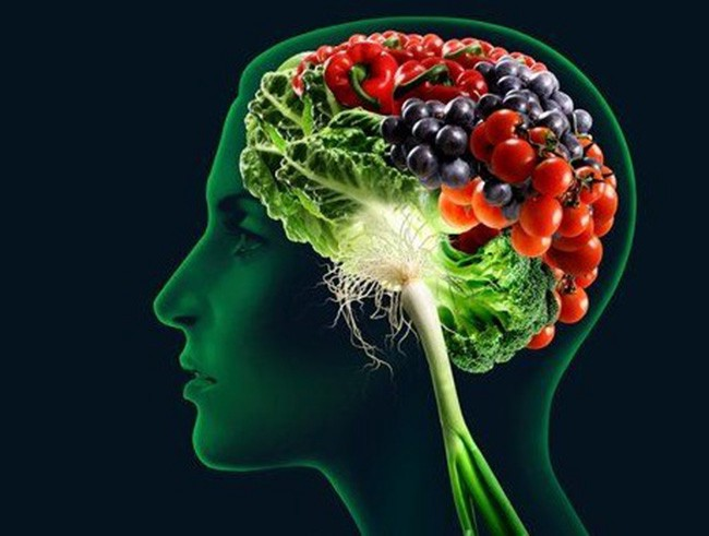 nutrisi otak dancow